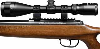 Rifle Crosman mod