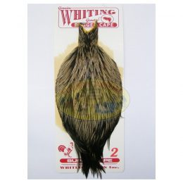 Bugger Cape marca Whiting
