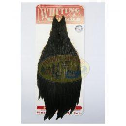 Cuello de Gallina marca Whiting