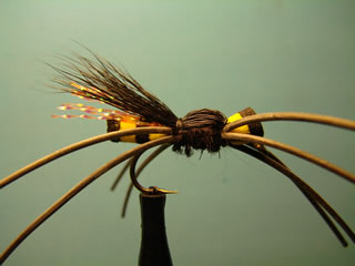 Chaqueta Amarilla (12)